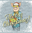 pig christmas and new year concept vector image