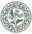 thistle flower and ornament round leaf thistle vector image vector image