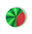 watermelon with seeds sweet vector image