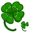 Green leaf clover symbol of success and good luck vector image