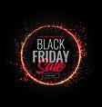 black friday sparkles sale background design vector image vector image