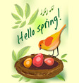 hello spring cute card with colorful bird by nest vector image vector image