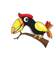 Hornbill cartoon vector image vector image