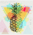 realistic and polygonal tropic fruit pineapple vector image