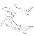 Black line sharks on white background hand drawn