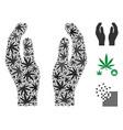 care hands collage of hemp leaves vector image vector image