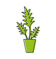 color nature plant with leaves inside flowerpot vector image