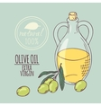 Olive oil carafe with olive branch Hand drawn vector image vector image