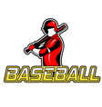sport baseball baseball player background i vector image vector image