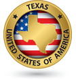 Texas state gold label with state map vector image