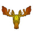 antistress colored in orange shades moose head vector image vector image