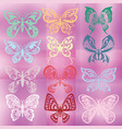 butterfly set isolated on colorful violet vector image vector image
