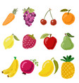 colorful fruit and vegetable in flat hand draw vector image
