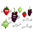 Currants strawberries and gooseberries fruits vector image