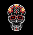 day dead skull skull sugar flower vector image vector image