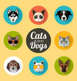 dog and cats portraits with flat design vector image vector image