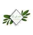 green tropical leaves vector image vector image