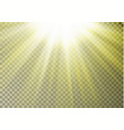 sun ray light on top isolated on checkered backgro vector image vector image