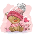 Teddy Bear in a knitted cap vector image vector image