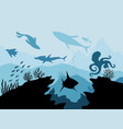 underwater wildlife coral reef with fish on a vector image