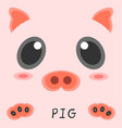 abstract drawing animal pig picture 2d design vector image