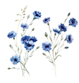 Blue flowers 8 vector image vector image