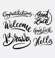 good luck and bravo hand written typography vector image vector image