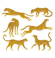 set of abstract silhouettes of leopards vector image vector image