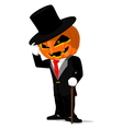 Pumpkin in black tuxedo vector image