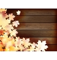 Autumn background with colored leaves plus EPS10 vector image vector image