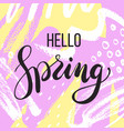 hello spring lettering on hand drawn abstract vector image vector image