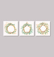 set of geometrics golden frames and leafs vector image