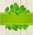 Green horizontal banner with leaves vector image