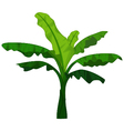 banana tree cartoon for you design vector image vector image
