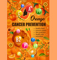 orange diet cancer prevention food nutrition vector image vector image