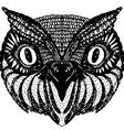 Owl head Doodle hand drawn on white background vector image