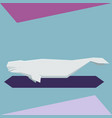 flat design beluga whale vector image vector image