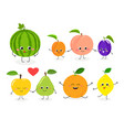 fruit set n1 vector image