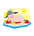 pig on the beach vector image vector image