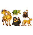Sticker set with many wildlife vector image vector image