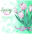 Tulips Greetings Card vector image vector image