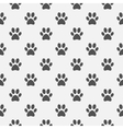 Animal black paw footprint pattern vector image vector image