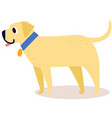 cute cartoon golden retriever in a blue collar vector image