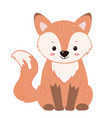 cute cartoon red sitting foxisolated on white vector image vector image