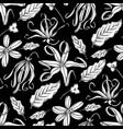 graphic ylang ylang pattern vector image