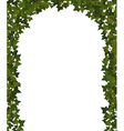 ivy arch vector image vector image