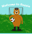 russian bear in a cap with ear-flaps valenoks vector image vector image