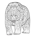 coloring bear for adults vector image vector image