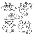 coloring page outline of cartoon fluffy cats vector image vector image