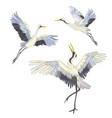 Crane a bird in flight design element